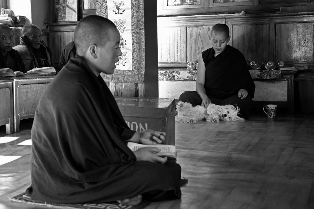 Lewandowska-ladakh-indie-klasztor-mniszka
